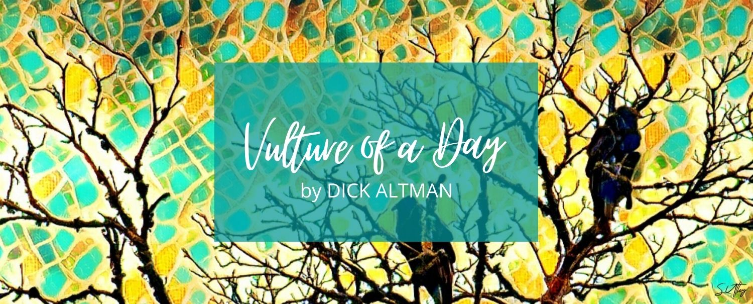 READ IT NOW: VULTURE OF A DAY