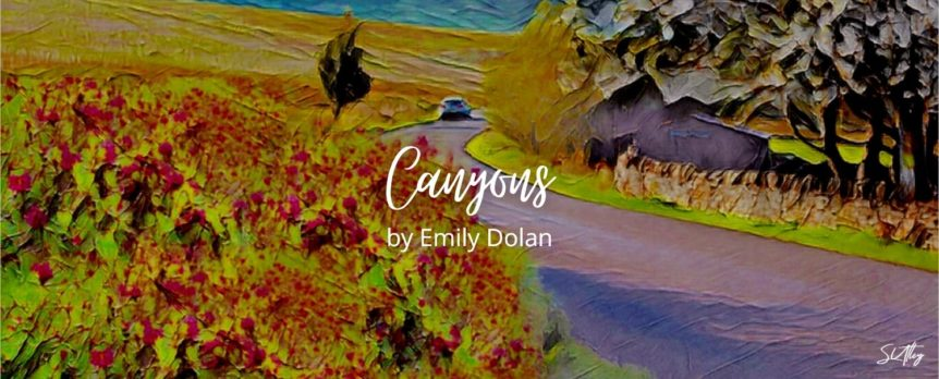 Canyons by Emily Dolan