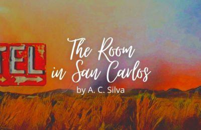 The Room in San Carlos