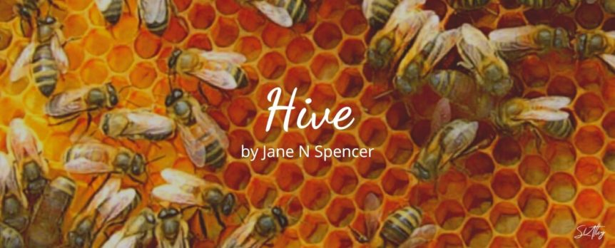 Hive by Jane N Spencer