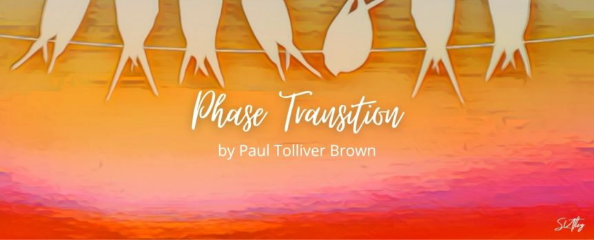Phase Transition by Paul Tolliver Brown