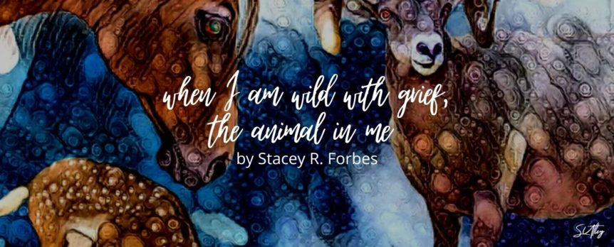 when I am wild with grief, the animal in me by Stacey R. Forbes